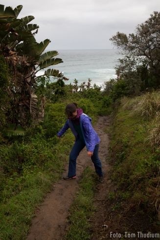 Blowhole Wanderung Bergziege im Jungel