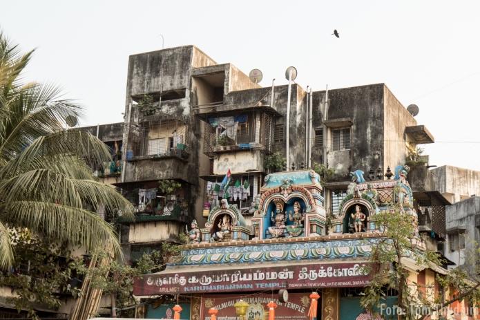 Mumbai (5)
