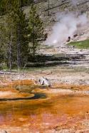 Abfluss Imperial Geysir