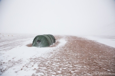 Schneesturm, ja es war viel Schnee und nur weil da so viel Wind ist liegt keiner auf der Kuppe